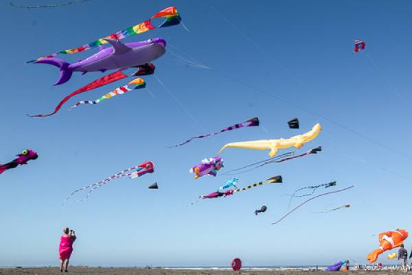 woman photographing kites in flight