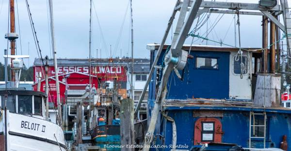 Fishing Boats in Ilwaco Washington