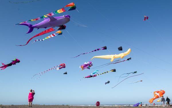 Kites flying at the Long Beach International Kite Fesival