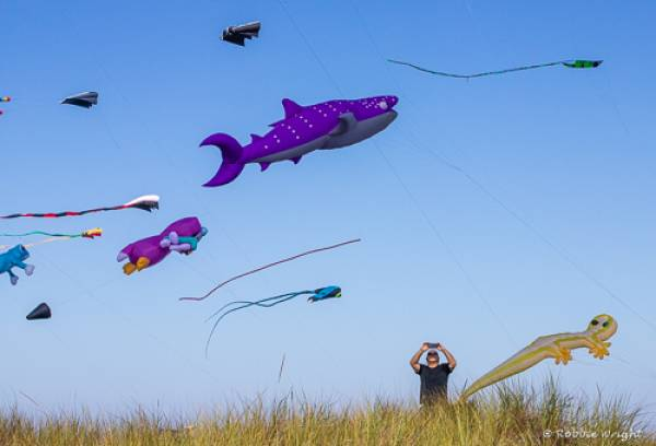 person photographing kites in Long Beach, WA