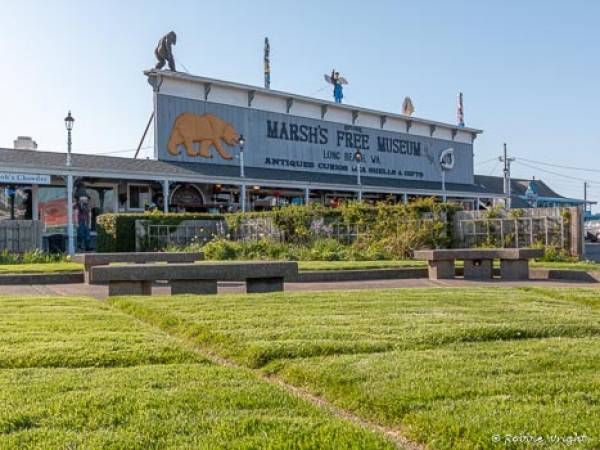 Marsh's Free Museum is a family fun favorite place to visit