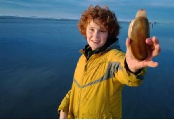 Boy holding a razor clam