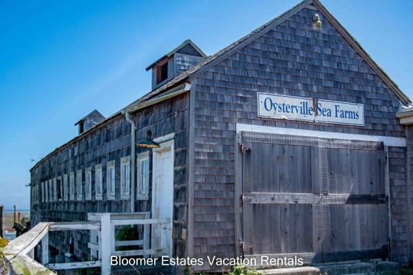 Oysterville Sea Farms, Washington Coast