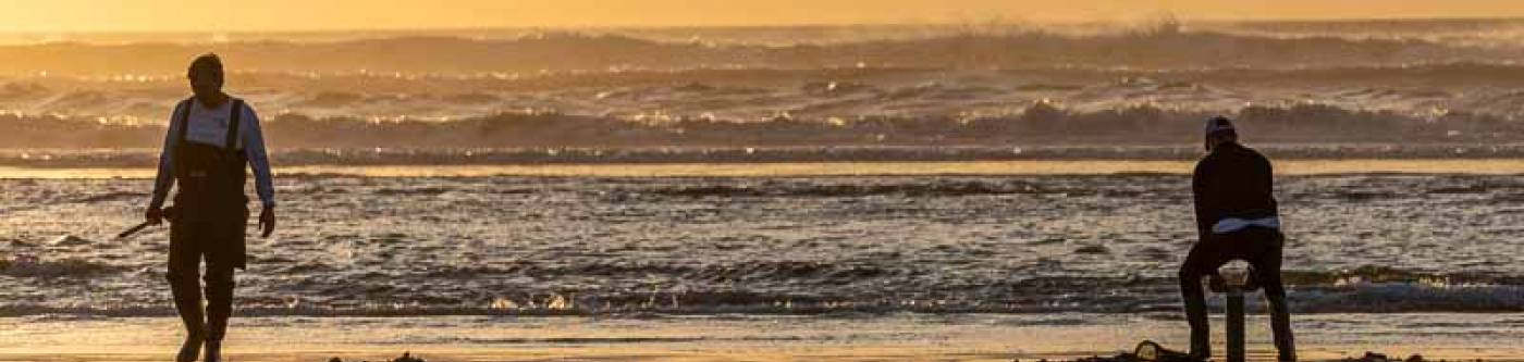 Clamdiggers at sunset in Long Beach Washington