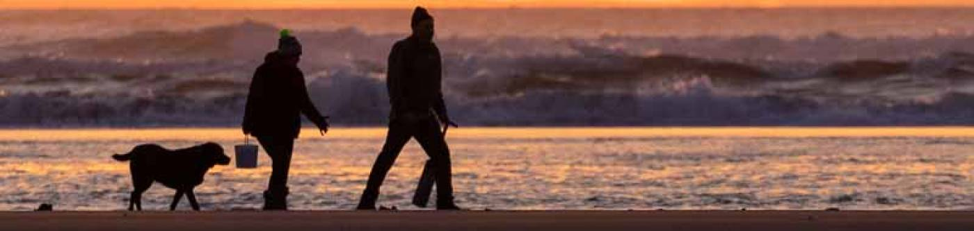 Two people walking at sunset with dog and clam guns